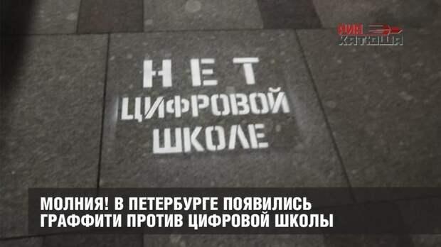 В Петербурге появились граффити против цифровой школы