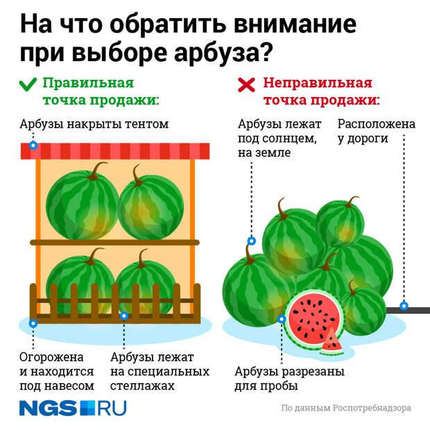 «Какая Аргентина, слушай?»: в Новосибирске начали торговать арбузами — откуда их привезли