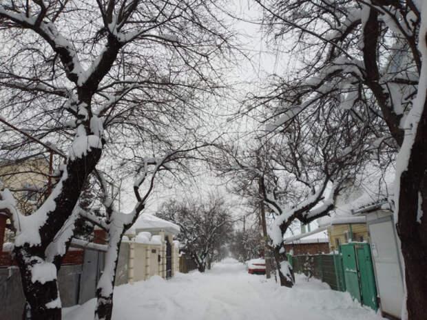 На Новороссийск обрушится холодный северный ветер