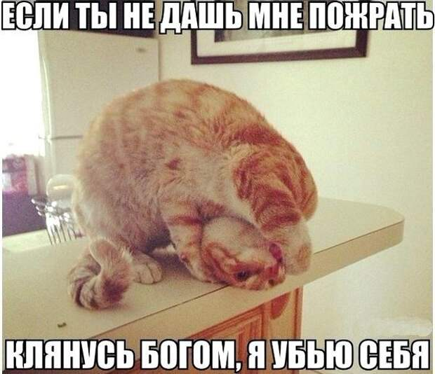 яяя1234