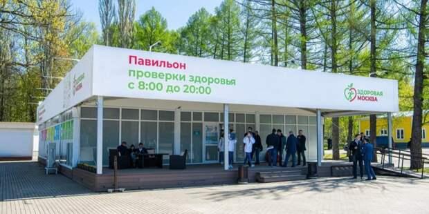 Семь тысяч человек обследовались в павильонах «Здоровая Москва» за три дня. Фото: М. Мишин mos.ru