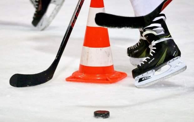 Любители хоккея соберутся на празднике в СВАО Фото с сайта pixabay.com