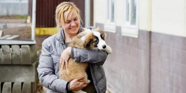 Собянин снял ограничения с работы волонтеров в приютах для животных / Фото: mos.ru
