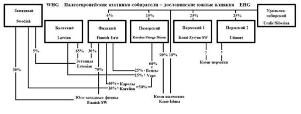 ДеревоСеверv2-2