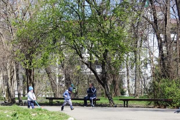 В скверах Краснодара откроют бесплатные туалеты