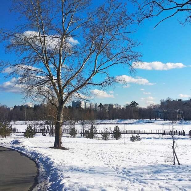 Фото дня: ранняя весна в Джамгаровском парке