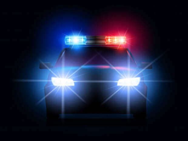 «ФИЗИЧЕСКИЕ ЧАЕВЫЕ»: полицейским разрешат получать неденежное вознаграждение
