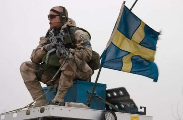 Россияне на угрозу военных проблем из Швеции привели «доходчивый ответ» Петра I