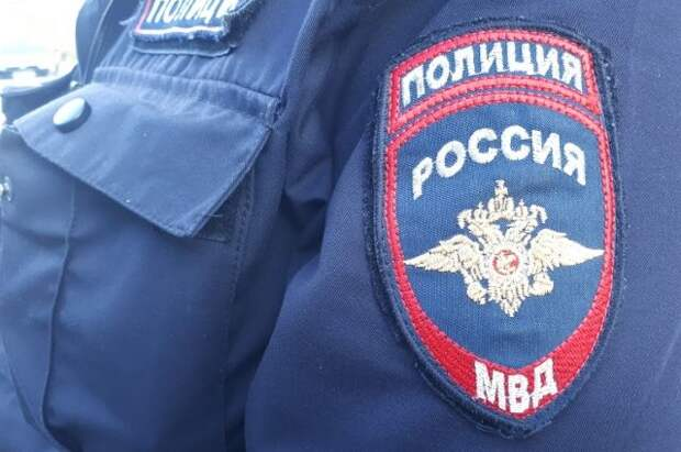 Воронежские полицейские спасли тонувших в болоте детей