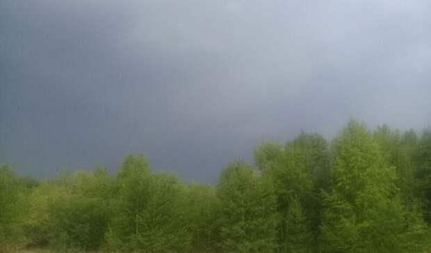 Назападе ивцентральной части Оренбургской области ожидаются грозы