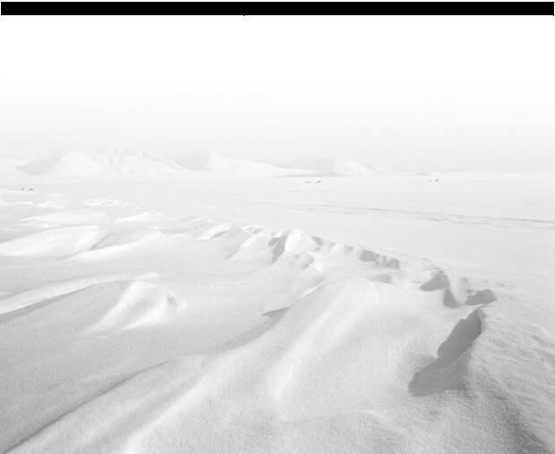 3 открытия почему Россия продала Аляску!?