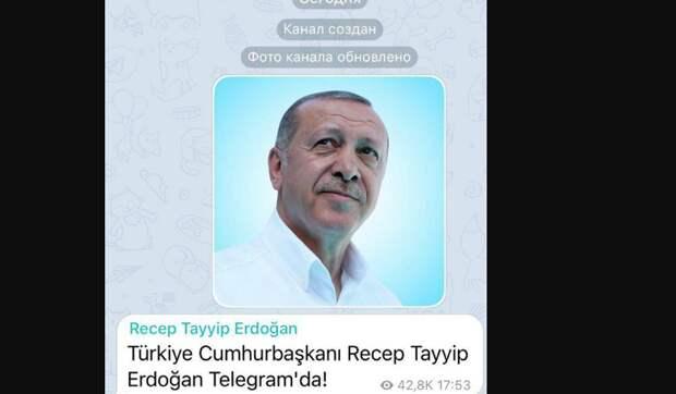 Эрдоган, Макрон и Зеленский: мировые лидеры уходят в Telegram