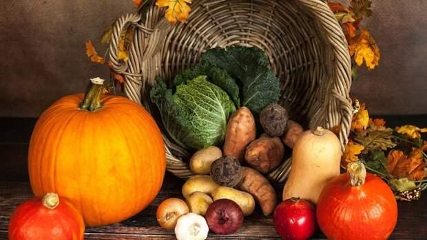 Британские ученые выяснили, что вегетарианцы менее подвержены разным болезням