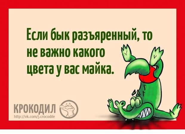 Юмор и веселье в картинках с надписями от Крокодила (12 фото)