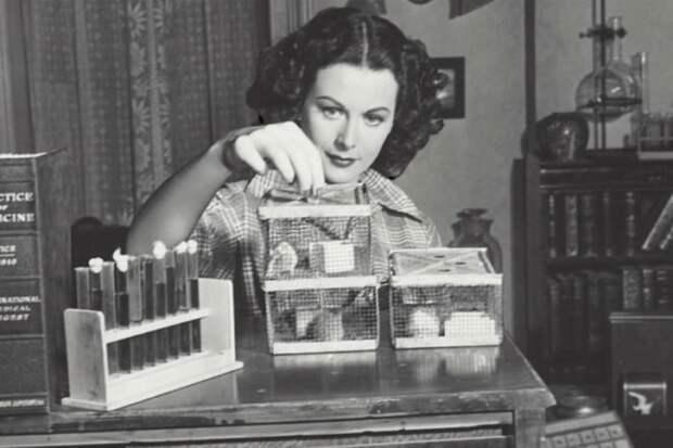 5 инновационных изобретений, созданных женщинами. Мы используем их каждый день