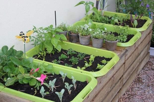 Отличные идеи для сада и огорода, которые облегчат работу