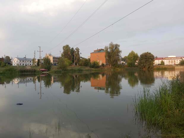 Пьяный житель Камбарки утонул в городском пруду