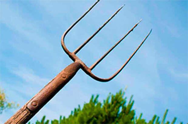 В Житомирской области мужчина ударил вилами родственника