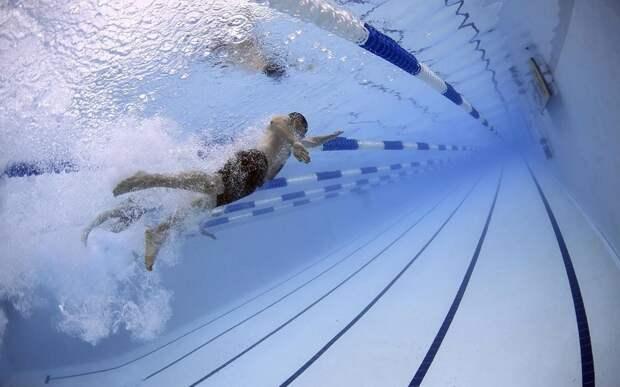 В Рязани строительство 50-метрового бассейна перенесли из центра на окраину