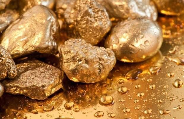 Житель Магадана, самостоятельно добывший золото на 9 миллионов рублей, отправится за решётку