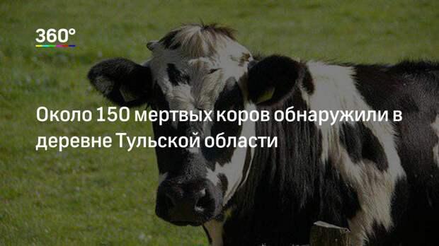 Около 150 мертвых коров обнаружили в деревне Тульской области