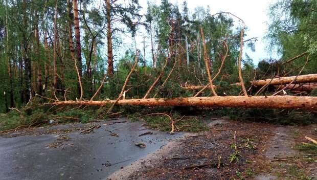Энергоснабжение жителей Нижегородской области полностью восстановлено