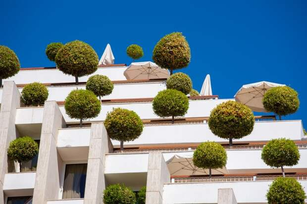 Архитекторы этих домов доказали, что сад можно разбить даже на крыше