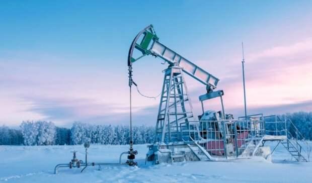 Участки вАрктическом заповеднике США сданы варенду нефтяникам