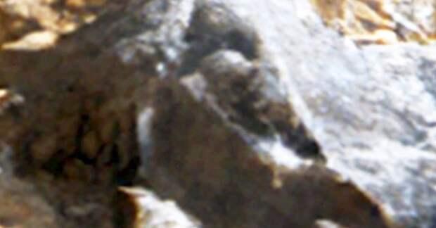 Гигантский НЛО на Луне и черепа на Марсе
