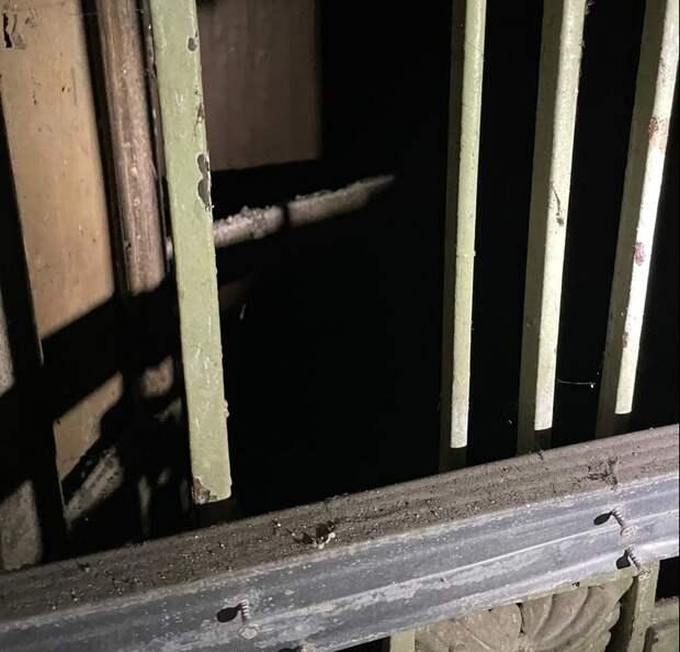 В Петербурге в парадной дома Полежаева нашли старинный лифт — видео