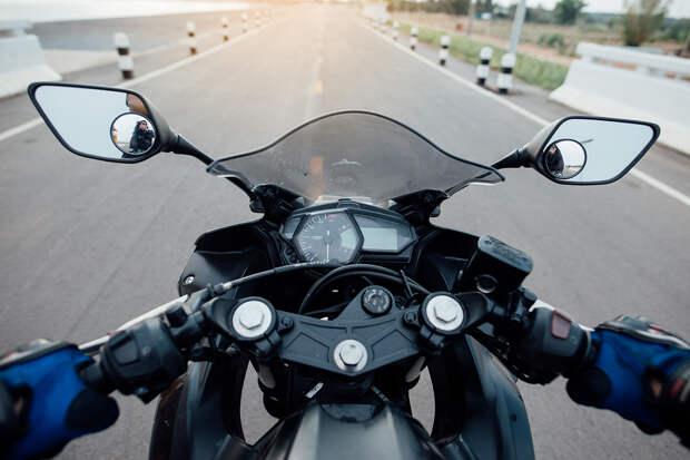 Британский мотоциклист стал жертвой птицы