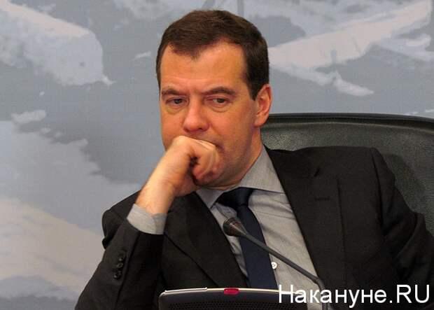 медведев дмитрий анатольевич председатель правительства рф(2013) Фото: Накануне.ru
