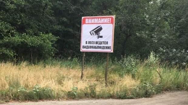 Спрятаться откамер вРостовской области неполучится даже влесу