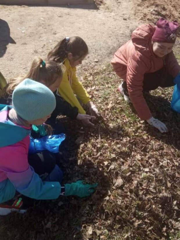 Андреапольская школа приняла участие в «Зелёной весне-2021»