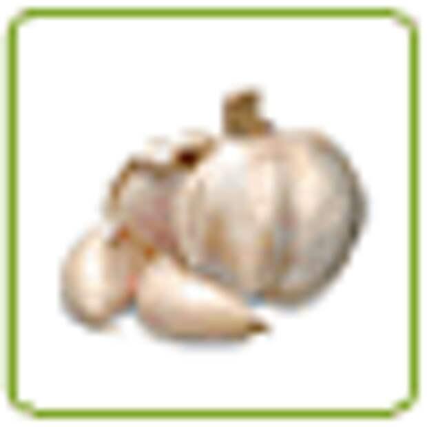 Куриный террин с ветчиной и фисташками, рецепт с фото