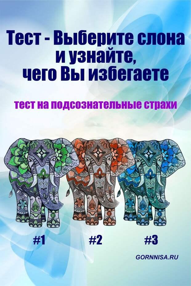 Тест – Выберите слона и узнайте, чего Вы избегаете