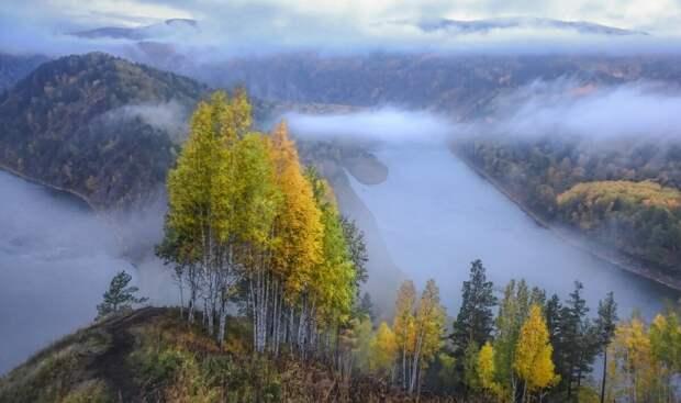 Туманы реки Маны. Автор Евгений Дубынин