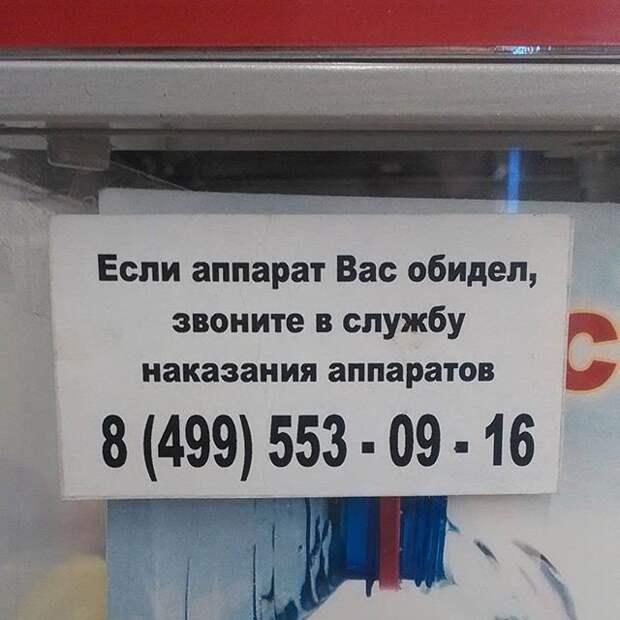 1450786536_kazusy-da-upsy-14