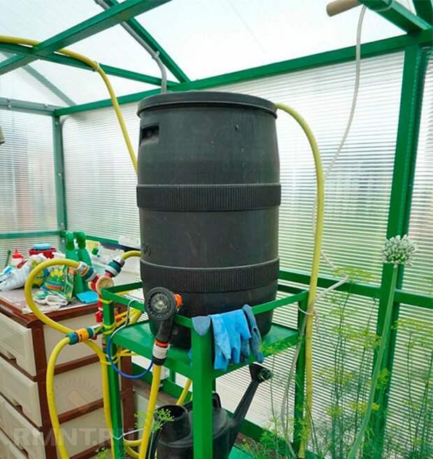 Автоматический капельный полив в теплице