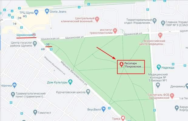 Масленичные гуляния пройдут 14 марта в Щукинском парке