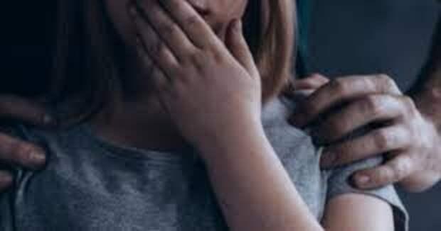 В Киевской области мужчина развращал свою малолетнюю племянницу. Появилось видео
