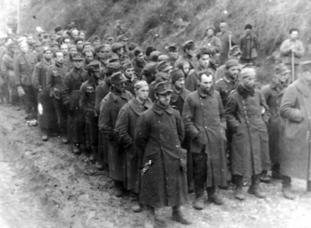 Пленные украинцы из СС. /Фото: i.pinimg.com