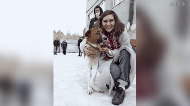 «Стенограффия» из Екатеринбурга спасла бродячего пса от ампутации лапы