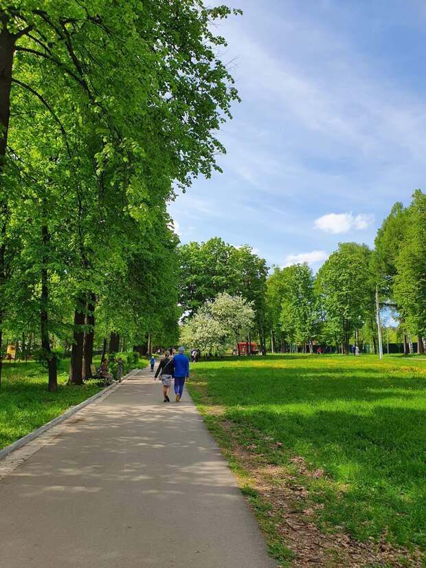 Итоги дня: отмена дня рождения парка Кирова в Ижевске и возможные изменения в правительстве Удмуртии