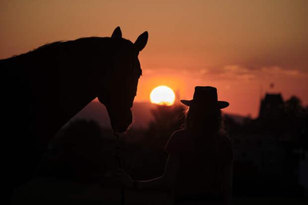 sunset by Hanspeter Schmutz on 500px.com