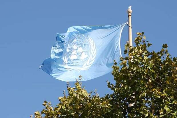«Будем бесить их и дальше, вода камень точит» - российский дипломат в ООН