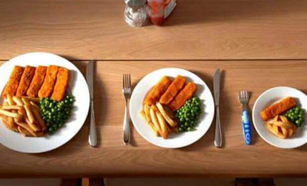Сколько нужно есть для долголетия