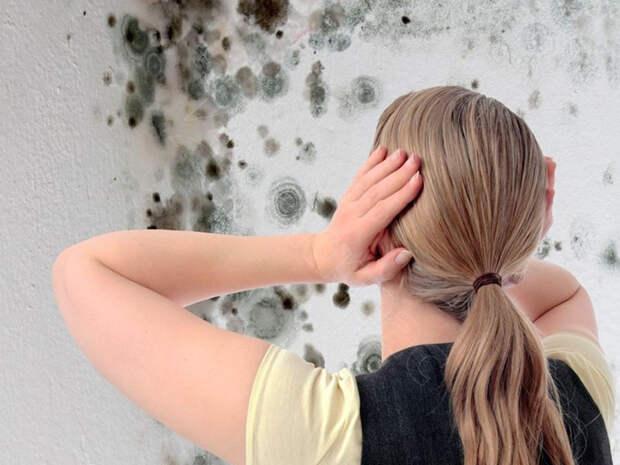 Как избавиться от плесени при помощи всего одного натурального вещества