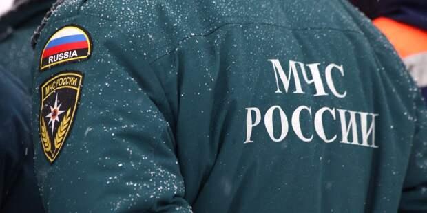 Студенты колледжа на Бибиревской выиграли конкурс «Звезда спасения»