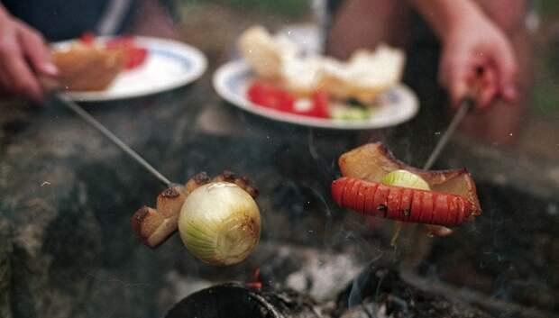 Жителям Подмосковья рассказали о лучших местах для пикника в регионе